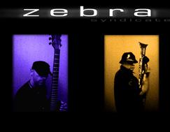 zebra_duo2